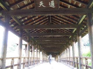 060423_Tofukuji002.JPG