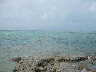 20061002_Okinawa031.JPG