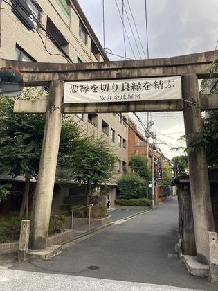 200831_020.JPG